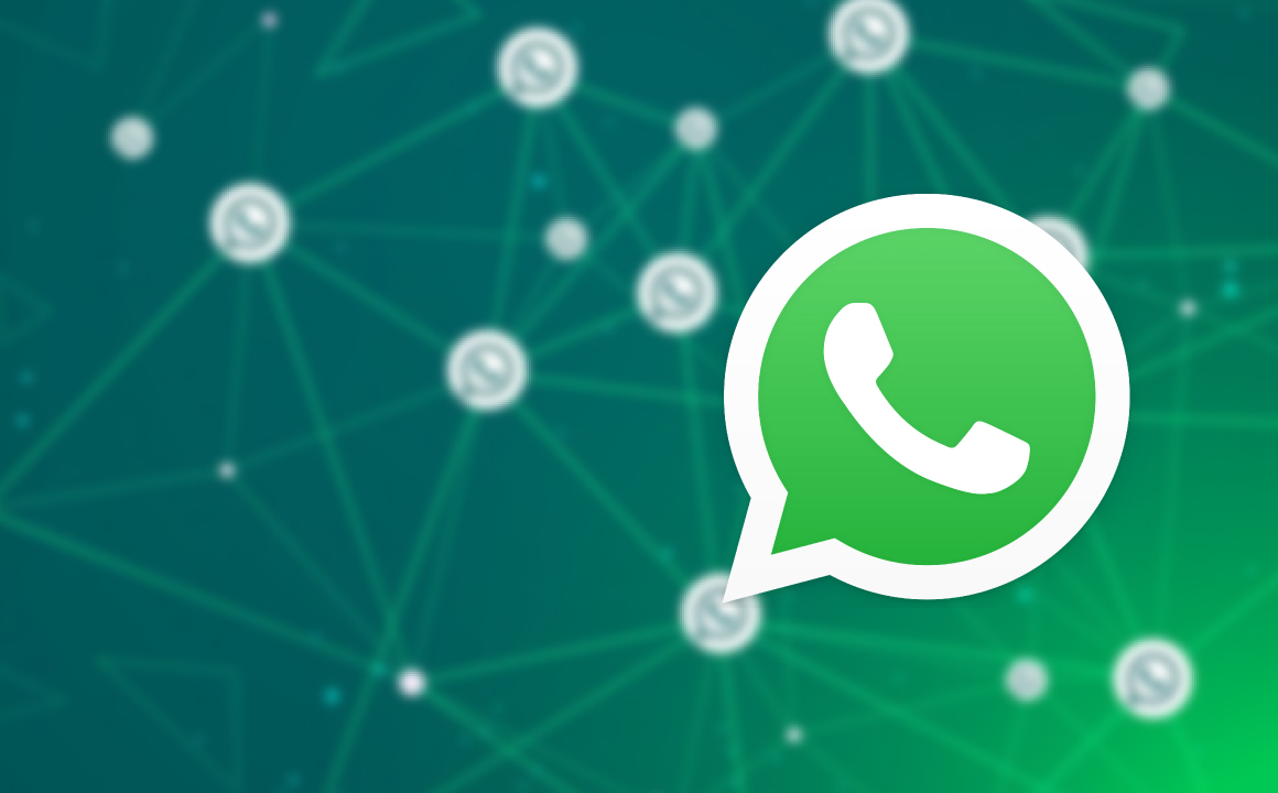 Busy Software whatsapp api